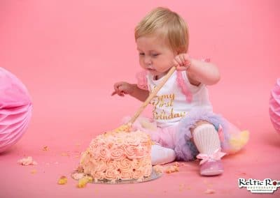 Girls First Birthday Cake Smash Photo Session