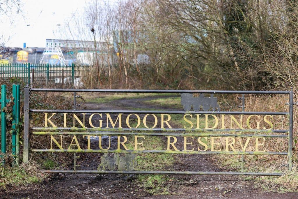 Carlisle Wildlife Photography Kingmoor Sidings